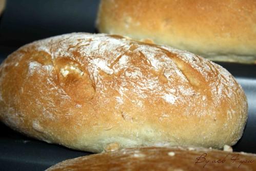 Petits pains bio aux graines de tournesol