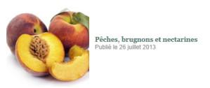 Peches--brugnons-et-nectarines.jpg