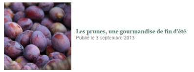 Les-prunes--une-gourmandise-de-fin-d-ete.jpg