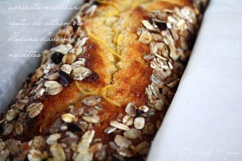 cake moelleux aux abricots et croustillant d'avoin-copie-2