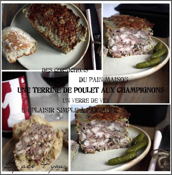 terrine de poulet aux champignons b