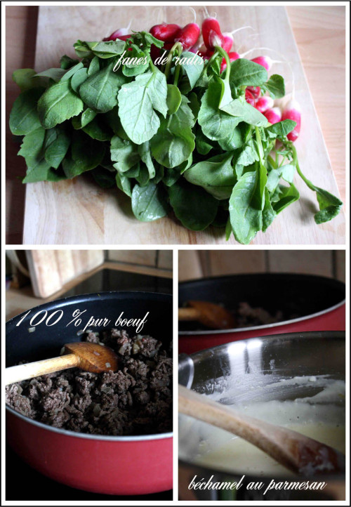lasagnes de boeuf et fanes de radis b