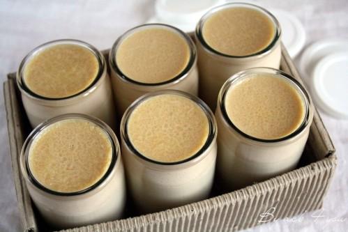 yaourt au salidou 1