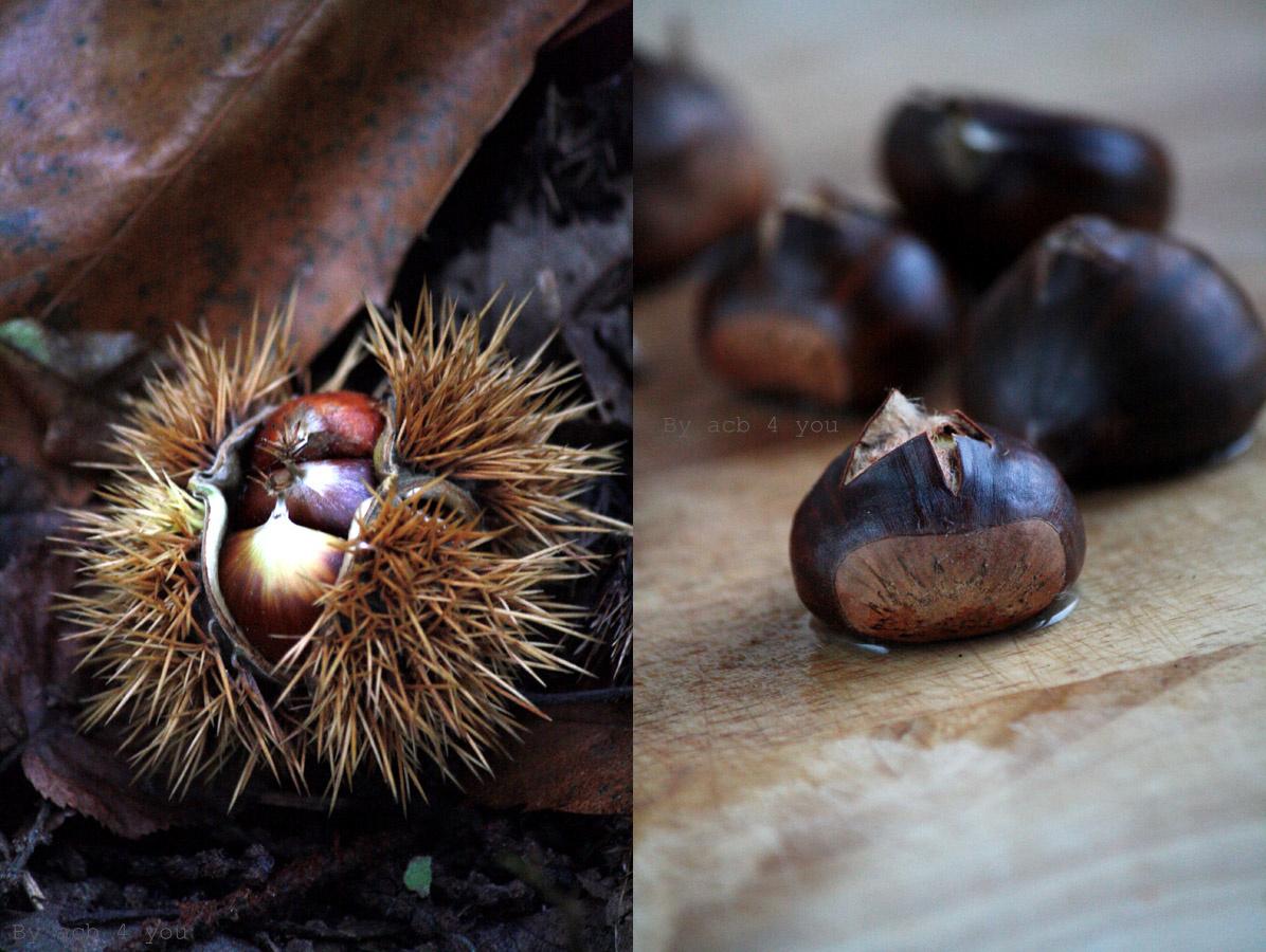 Galette aux châtaignes, raisins et pignons {vegan}