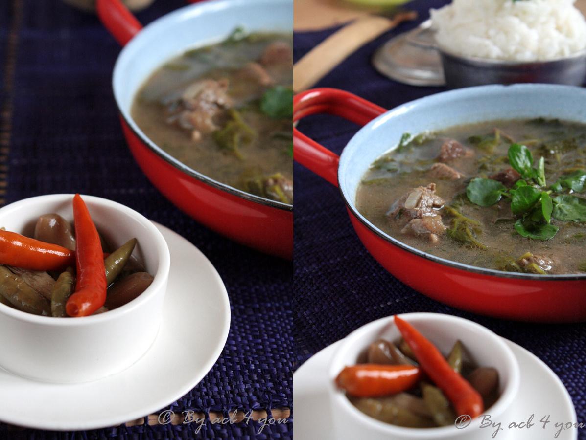 Romazava ou ragoût de bœuf au cresson