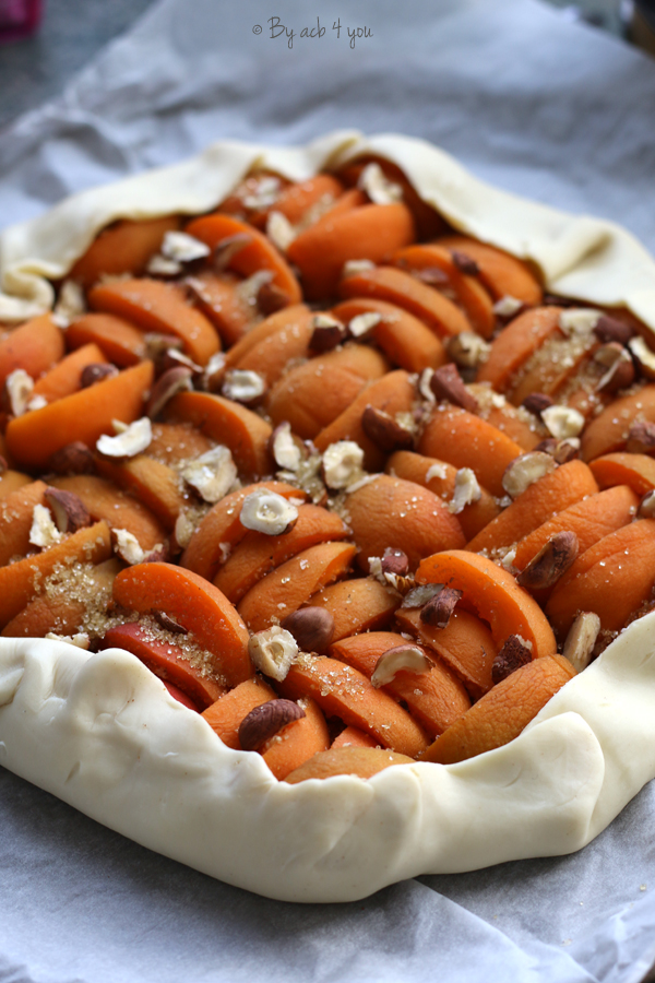 Tarte facile abricot et noisette façon rustique