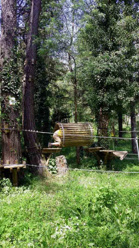 Gaufres salées au Comté et ail des ours