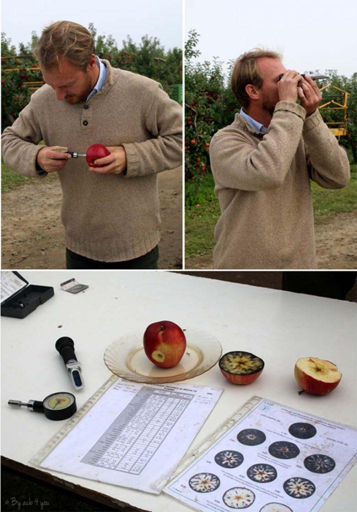 Des pommes, des pomiculteurs et un gâteau invisible aux pommes